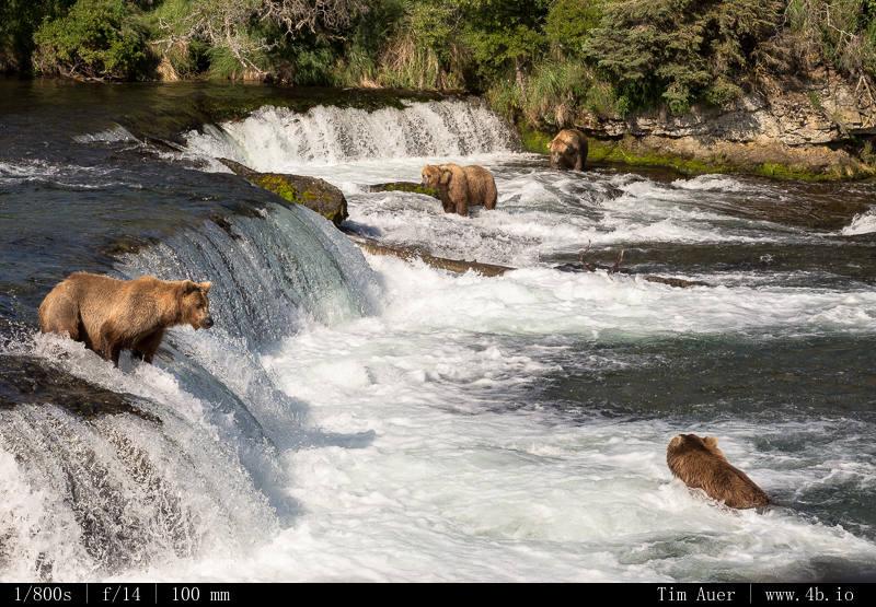 Sharing the falls