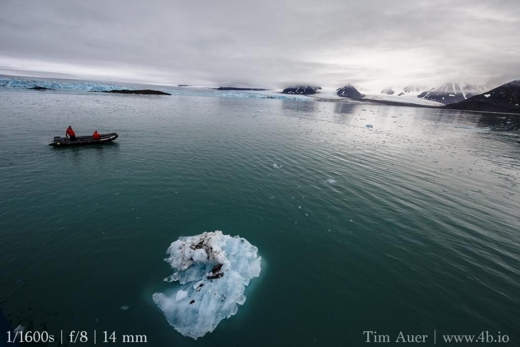 Arctic, beluga, birds, glacier, ice, icebergs, Krossfjord, lilliehook, Spitsbergen, svalbard, whales, wildlife